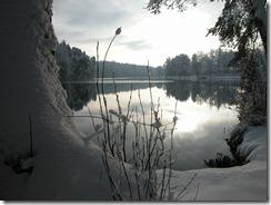 20101130_059
