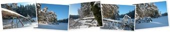 WinterSonne20101230_2 anzeigen