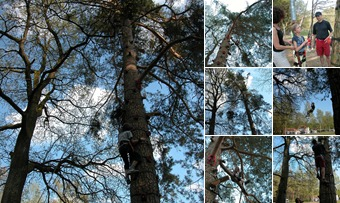 Baumklettern an Ostern auf See-Camping Weichselbrunn anzeigen